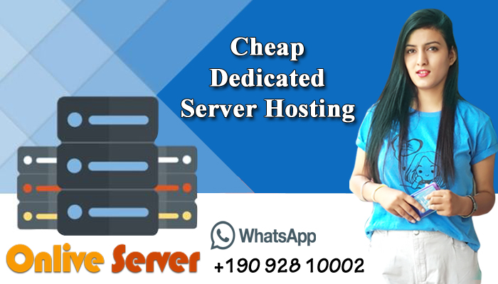 Norway Dedicated Server – Is it the Right Choice for your Business?