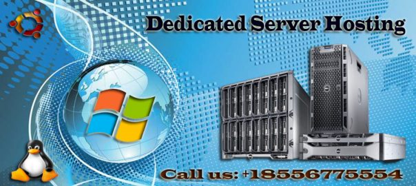 Supporting facilities and promising services of the Dedicated Server Hosting