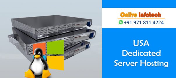 Go Through The Features Of Our USA Dedicated Server Hosting Plans
