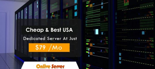 Go Through The Features Of Our USA Server Hosting Plans
